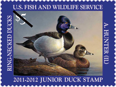 2011 Junior Duck Stamp