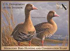 2011-2012 Duck Stamp