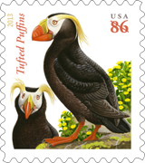Tufted Puffins Stamp, 2013