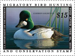 Federal Duck Stamp (not a postage stamp)