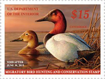 USPS Federal Duck Stamp 2014 - Migratory Bird Hunting and Conservation Stamp