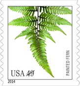 USPS Painted Fern Stamp, 2014