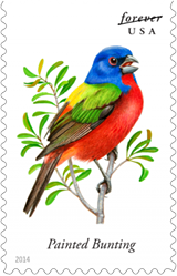 USPS Painted Bunting Forever Stamp 2015, Bird Stamps