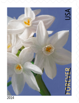 Winter Flowers Stamp, 2014 - USPS Flower Stamps 2014