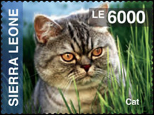 IGPC Sierra Leone Cat Stamp