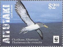 Chatham Albatross New Home