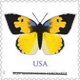 USPS California Dogface Butterfly stamp 2017