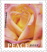 Peace Rose stamp, USPS 2018