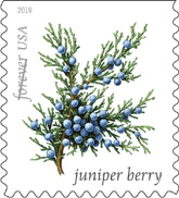 USPS New Stamp Issues 2019 on StampNewsNow com